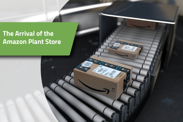 amazon-plant-store 2.png