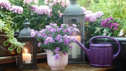 2018 home decor trends - purple Jewel tons