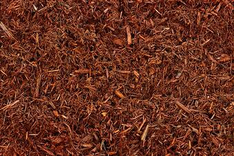 Red Mulch (1).jpg