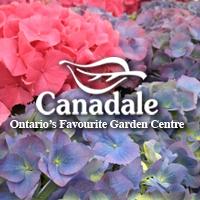 Canadale Nurseries Wholesale Plants
