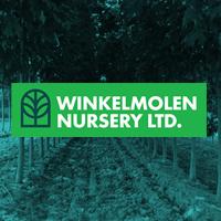 Winkelmolen Nursery wholesale plants