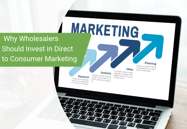 Why Wholesalers Should Invest in Direct to Consumer Marketing (1)