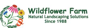 wildflower-farm